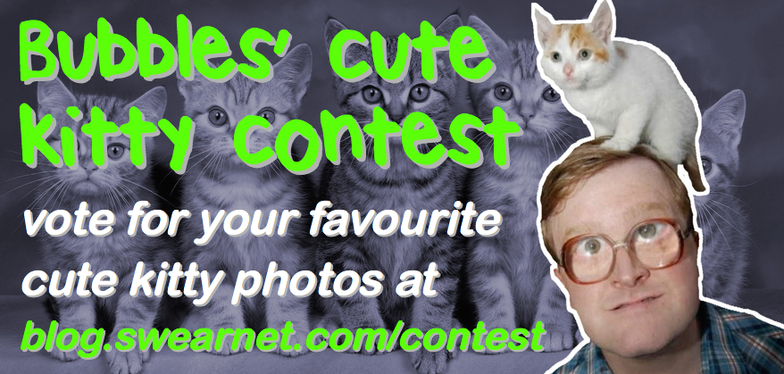 Vote for the cutest kitty in Bubbles' photo contest